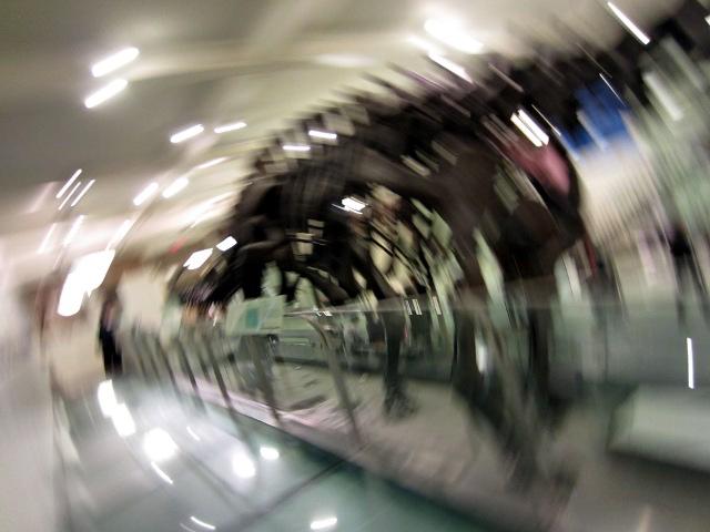 dizzydinosaur